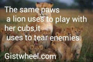 It is the same paws a lion uses to play with its cubs,that it uses to tear intruders..Don't under-estimate people.Meekness is not weakness