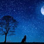 Boney M Silent Night Lyrics, video preview and mp3 free download