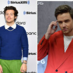 Liam Payne Shared His Thoughts On Harry Styles' Vogue Cover