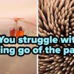 """Rate These Images From """"Fine"""" To """"Freaky"""" To Reveal A Deep Truth About Yourself"""