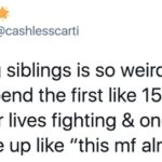 27 Pictures That Prove Having Siblings Completely And Totally Changes You For Life