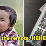 Only People With Amazing Attention To Detail Can Find The Remote Control That Their Sibling Has Hidden