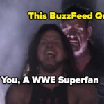 If You Recognize 9/16 Of These WWE Superstars, You're A True Superfan