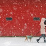 A Massive Snow Storm Hit The Northeast And The Photos Are Stunning