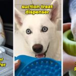 28 Products That'll Make Life Easier For You *And* Your Pet