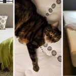 16 Of The Best Mattresses That You Can Get On Amazon