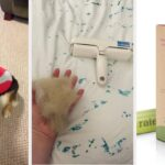 30 Pet Products From Amazon That May Not Be Exciting, But You'll Probably Find Indispensable