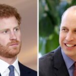 Prince Harry Spilled His Feelings Towards His Brother, Prince William