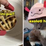 29 Products That Are Just Really Freaking Cute, OK