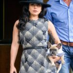 A Woman Who Tried To Claim A $500K Reward For Returning Lady Gaga's Stolen Dogs Is Now Facing Charges