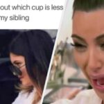 25 Memes That Will Make All Siblings Laugh Way Harder Than They Should