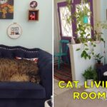 15 Good Things That Happened This Week, Including Catio Construction And A Dog With Really Short Legs