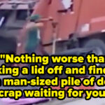 Garbage Collectors Of The World Want You To Change These 21 Trash Habits