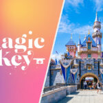 19 Of The Most Relatable Fan Reactions To Disneyland's New Magic Key Program